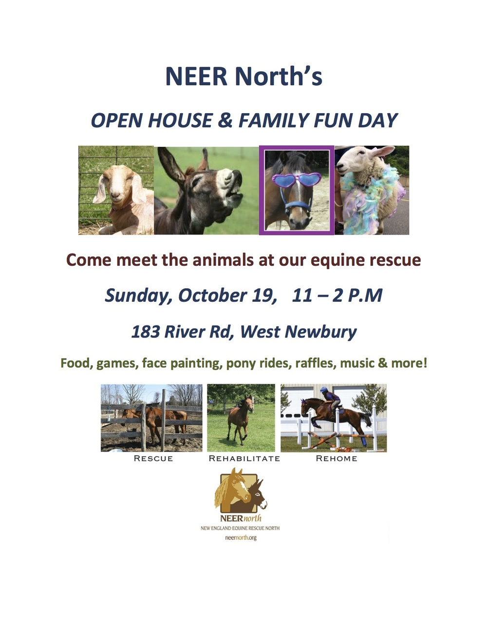 Come meet the horses and other animals at New England Equine Rescue.jpg
