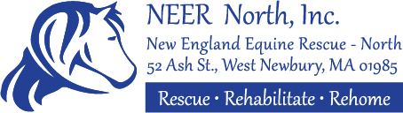 New England Equine Rescue - North