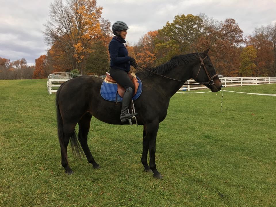 Copy of Beautiful under saddle