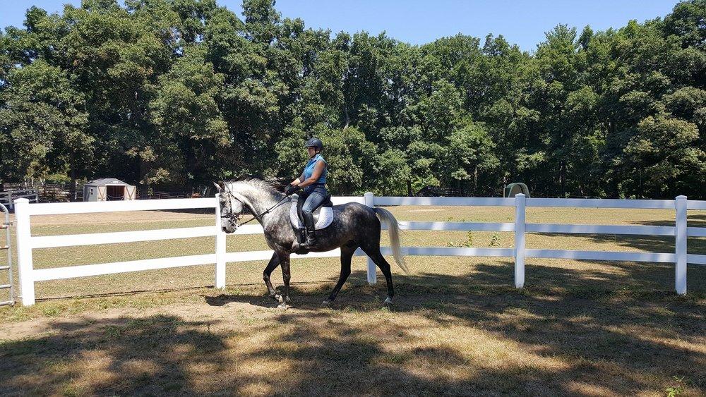 Beautiful under saddle