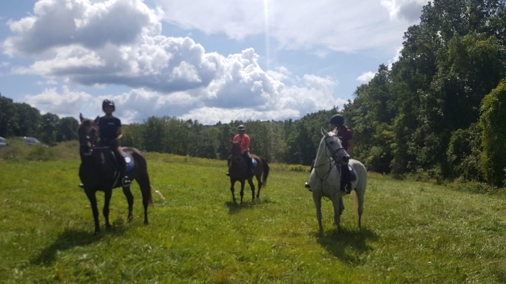Pipestave Adventure Trail 2017 (Shorty in middle between Prissy and Tris)