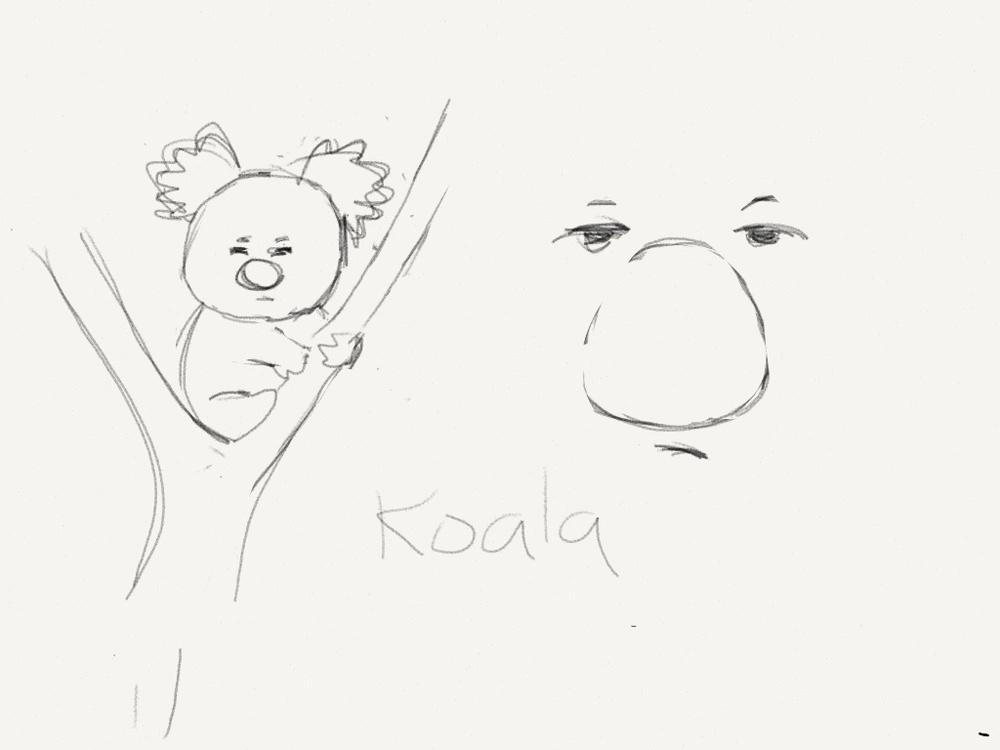 koalas.jpg
