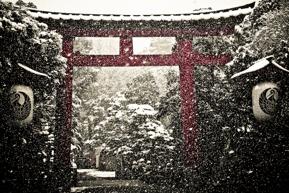 mbain_Winter Torii (Gate).jpg