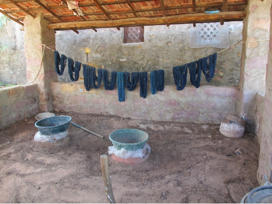 Indigo-dyed skeins of wool drying