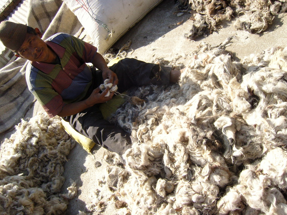 Sorting wool for spinning