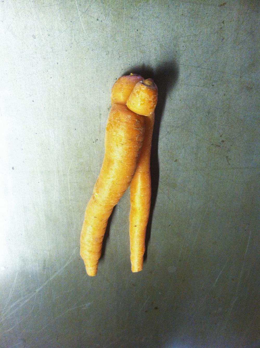 Carrot legs.jpg