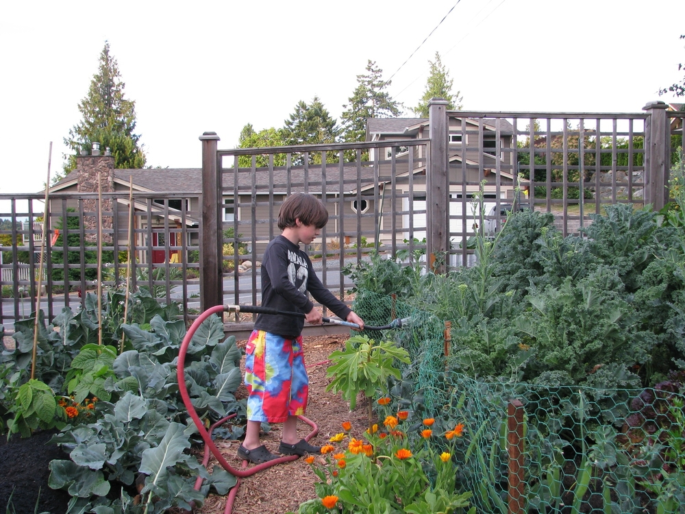 My 7 year-old Grandson Cohen helped build my Hugelkultur beds in Qualicum Beach, BC.
