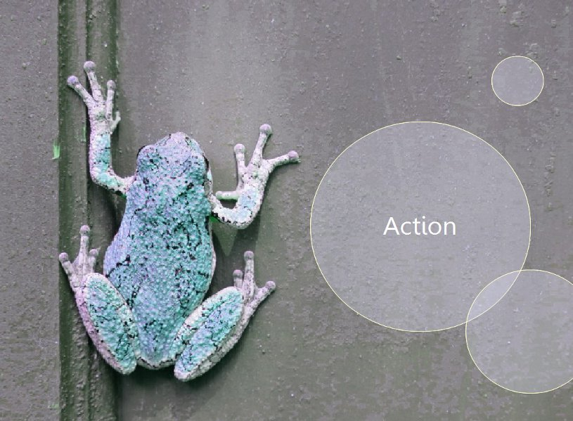 Frog_Action.jpg
