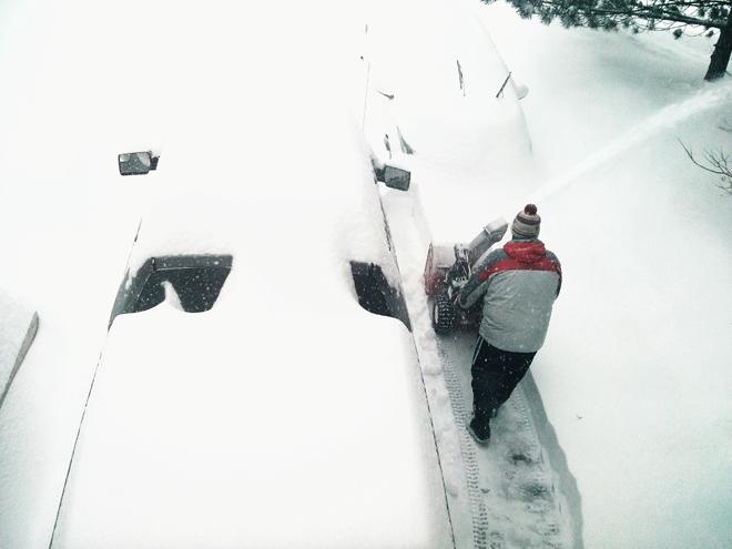 SnowstormDriveway