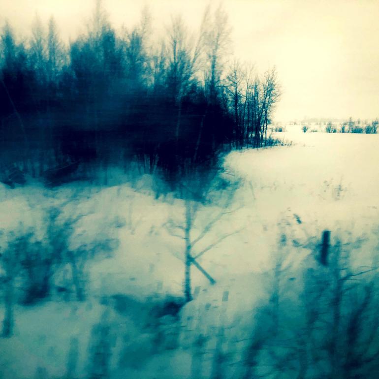 WinterTrainTrees2_770px(E9555).jpg