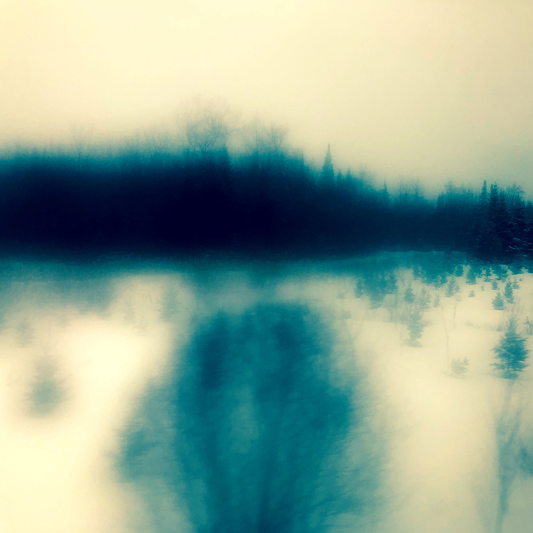 WinterTrainTrees1_770px(9551).jpg