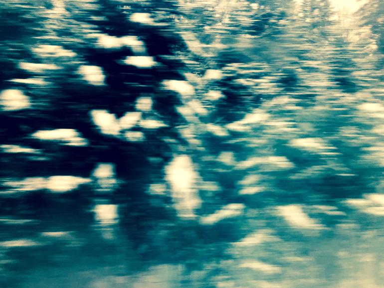 WinterTrainTrees4_770px(E9554).jpg