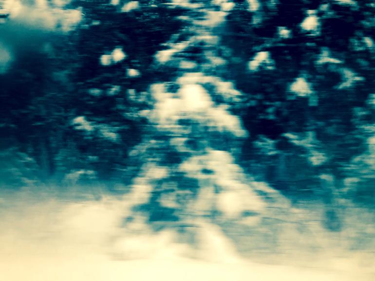 WinterTrainTrees3_770px(E9550).jpg