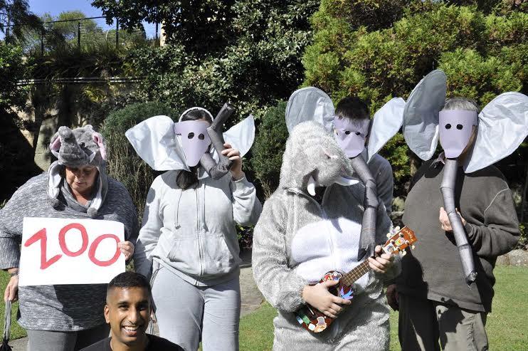 woollahra elephants.jpg