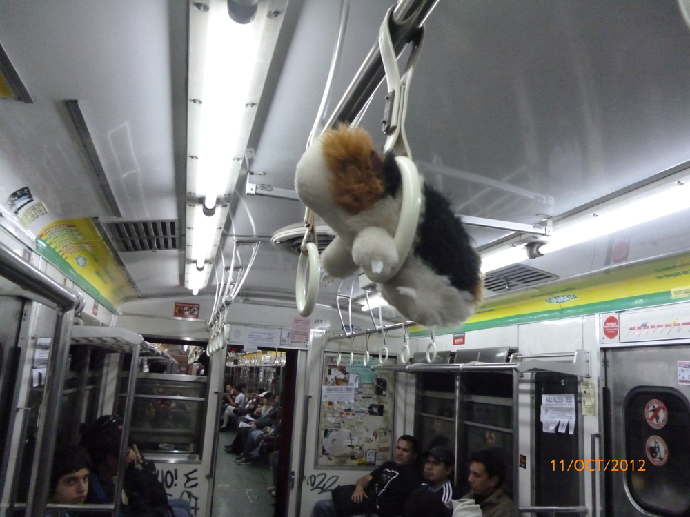 Alberta on the Subte.JPG