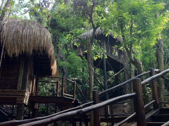 The treatment rooms are 'huts' set into the rainforest. Truly gorgeous. Each hut is equip with a network audio player.