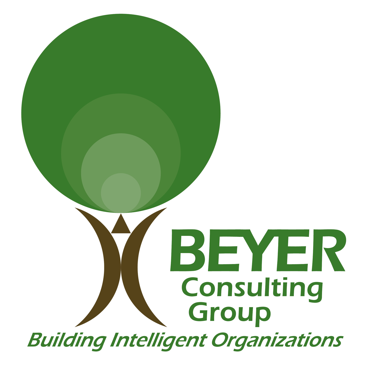 Beyer Consulting Group LLC