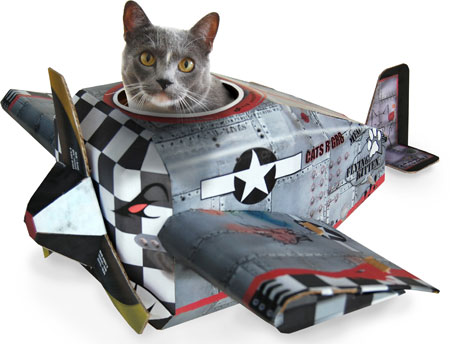 catplane-jpg