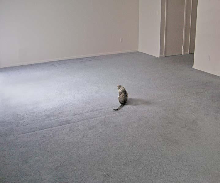 empty-room-jpg
