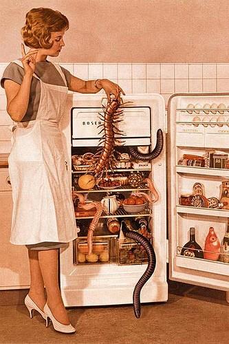 fridge-jpg