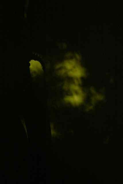 ghost-jpg