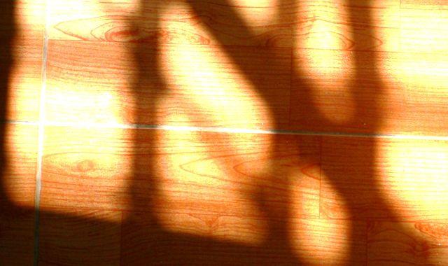 sun-jpg