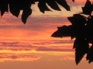 sunset_dip-jpg
