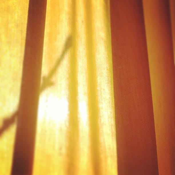 sunshine wink