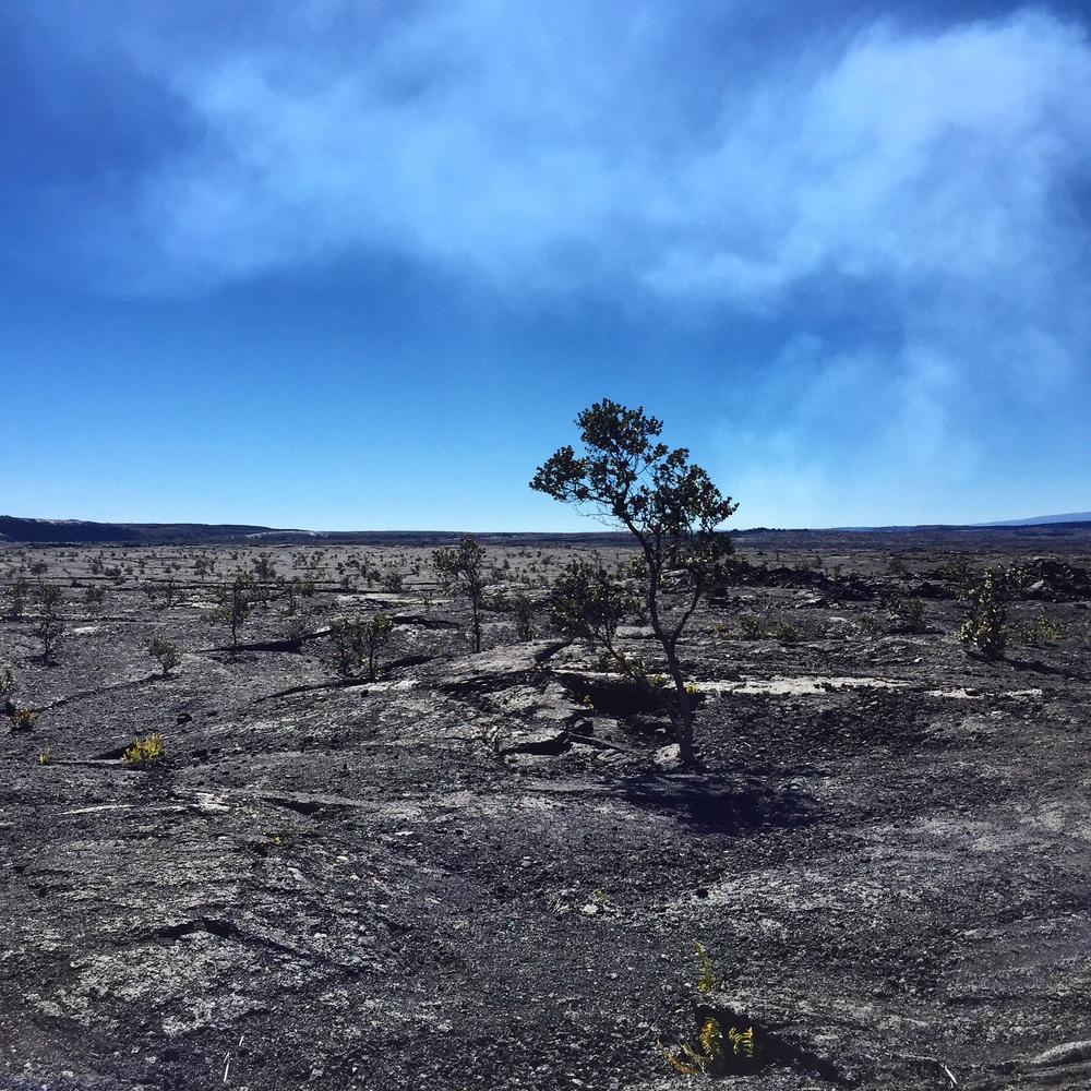 Volcano - Hawaii