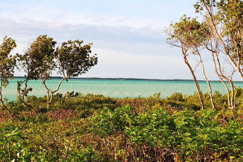 Florida-Keys-Landscape-21.jpg