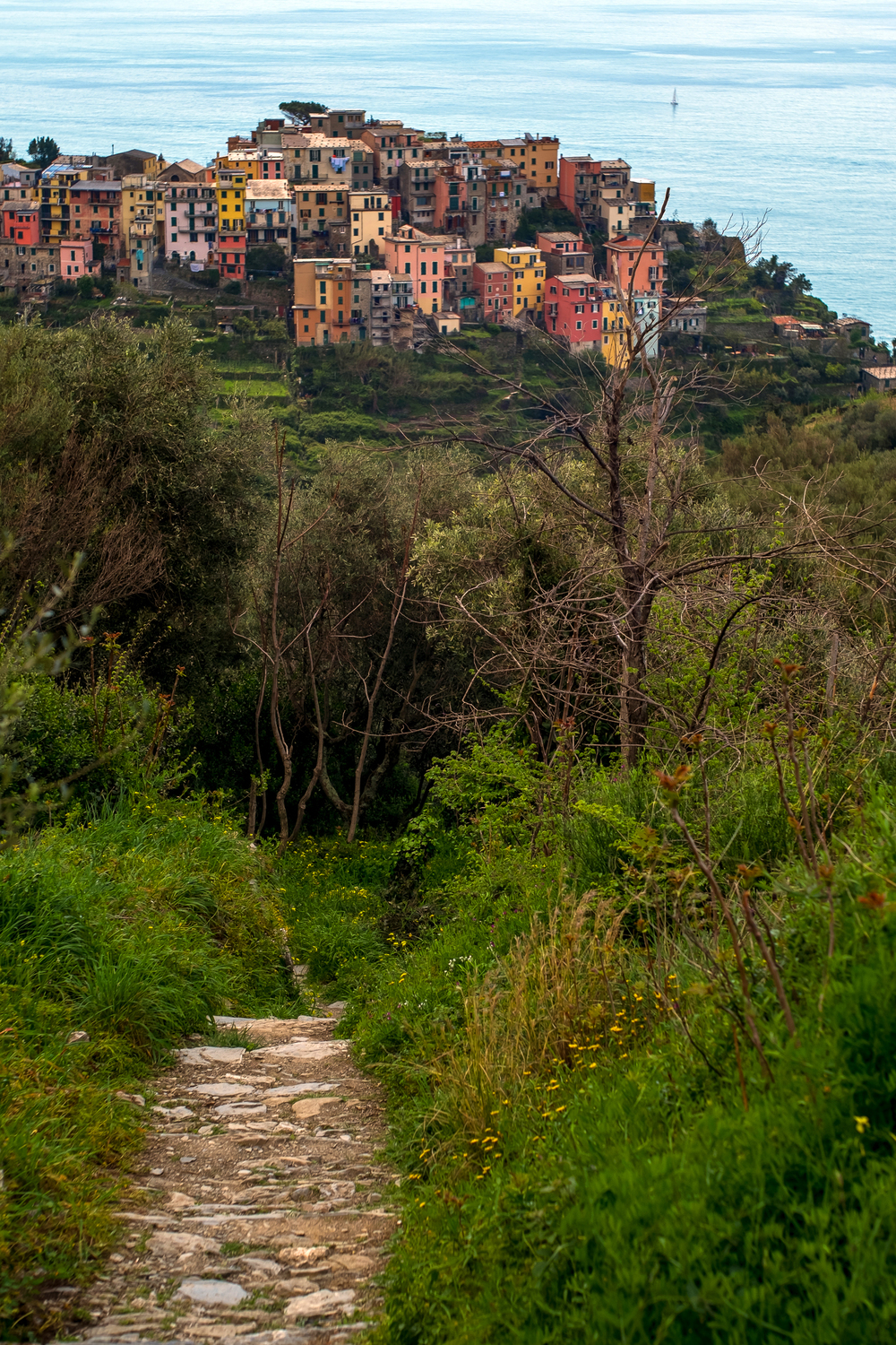"The view of Corniglia via the Sentiero Azzuro, or the Blue Trail. Located in the  Italian  r      egion of    Liguria , the trail links the five villages of the Cinque Terre (which means ""Five Lands"") including  Riomaggiore ,  Manarola ,  Corniglia ,  Vernazza  and  Monterosso."