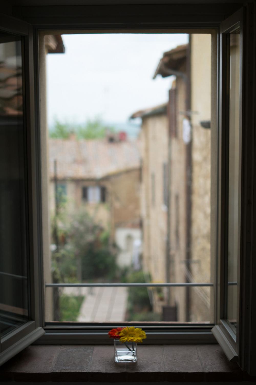 window-garden.jpg
