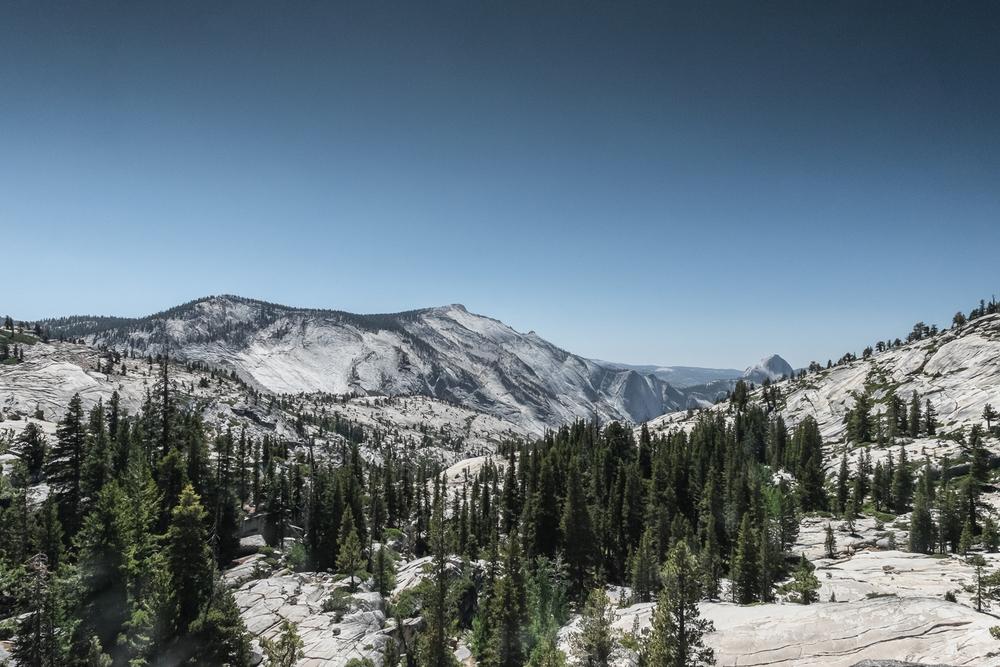 Yosemite-65.jpg
