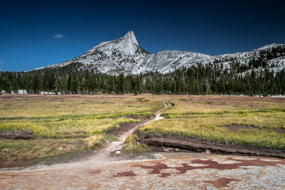 Yosemite-80.jpg