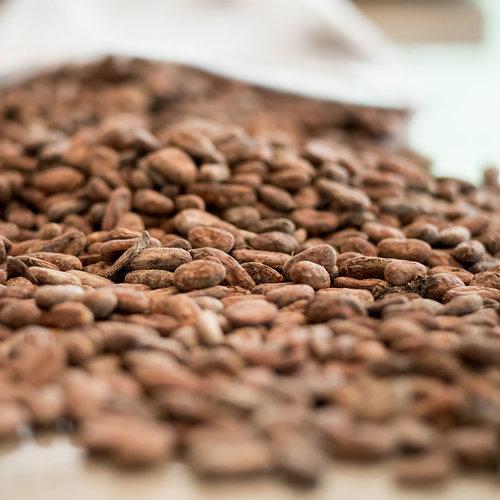 Batch-Beans.jpg