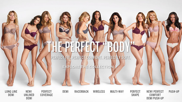 """WTF!?! """"THE PERFECT BODY"""" in this picture is a very small percentage of what the real size in America is today. This is what pops up in google when I search for """"ideal body women""""."""