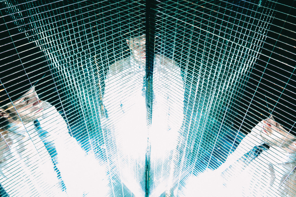 Trapped in a prism, in a prism of light. (125 of 365)