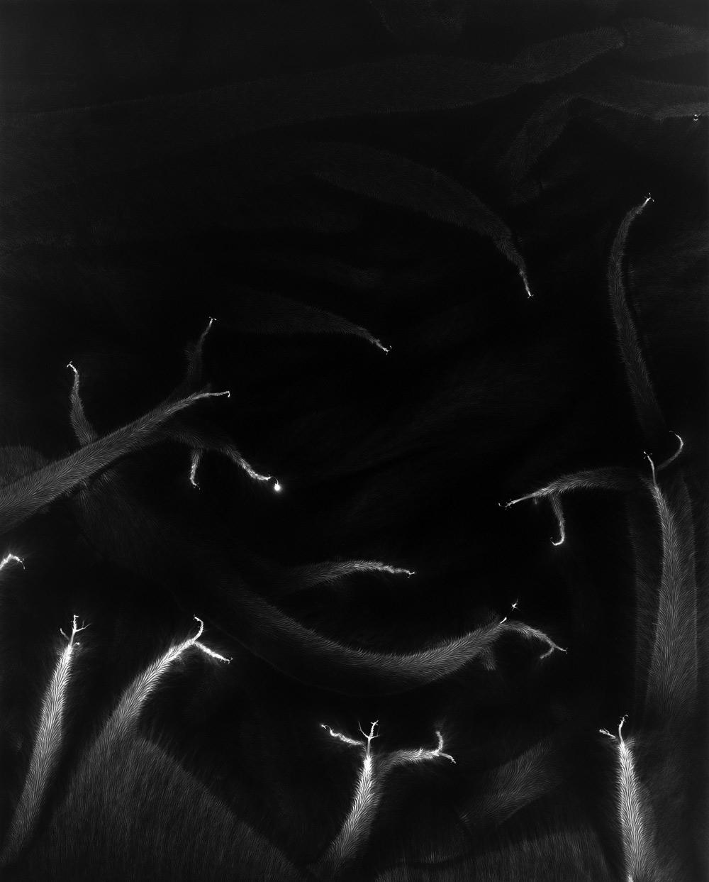 Lightning Fields 190 2009 - Hiroshi Sugimoto Artist - 1.jpg
