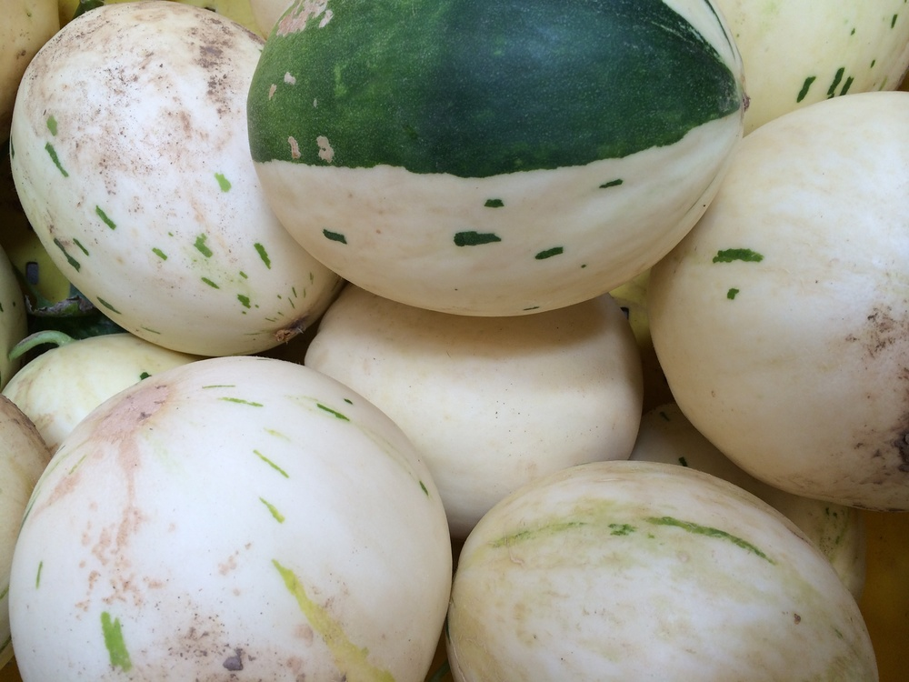 Snow Leopard melons. I adore the one with the big green stripe!!