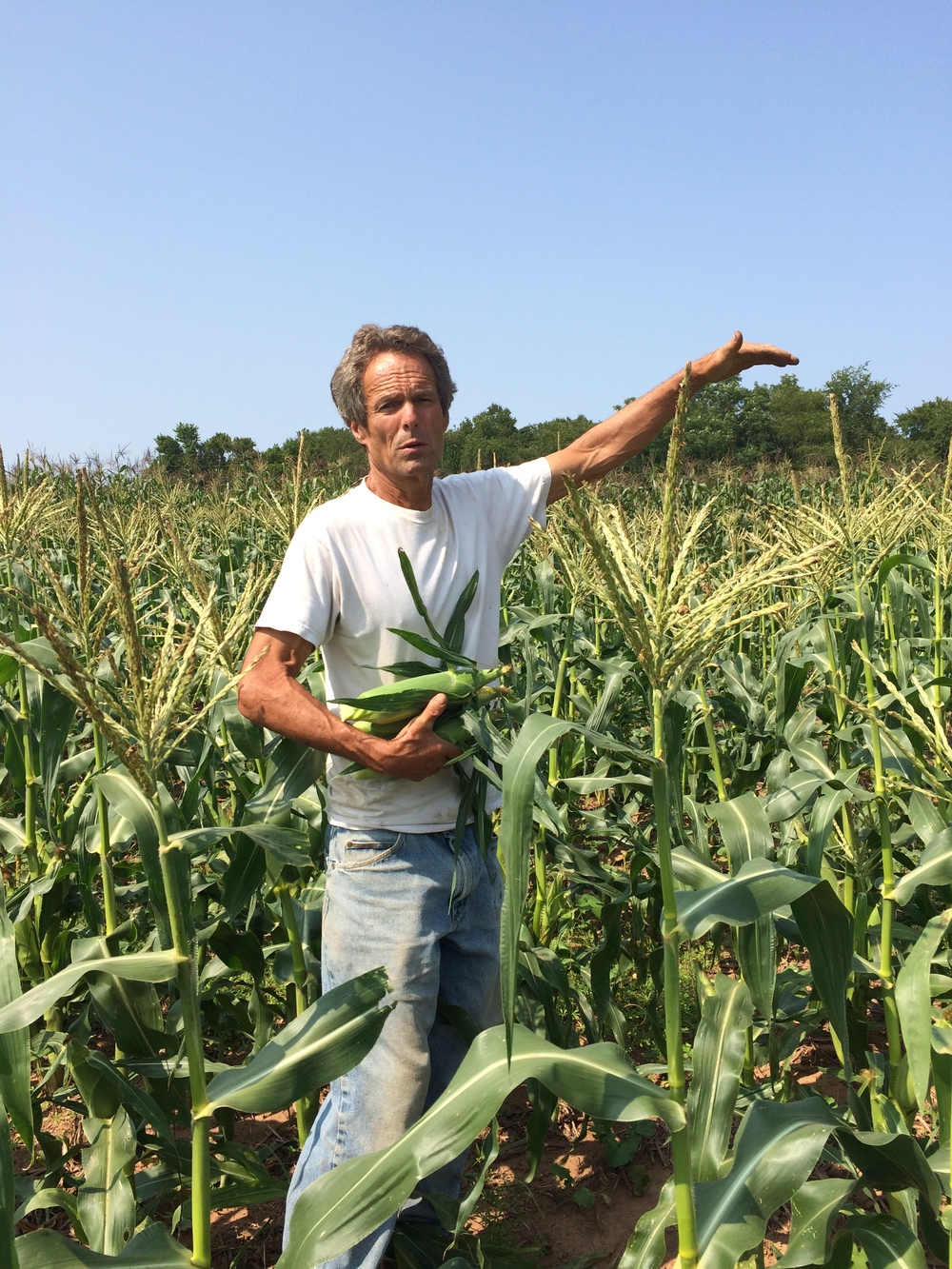 Steven, telling me about how the corn will get just a bit taller before it's done growing for the year