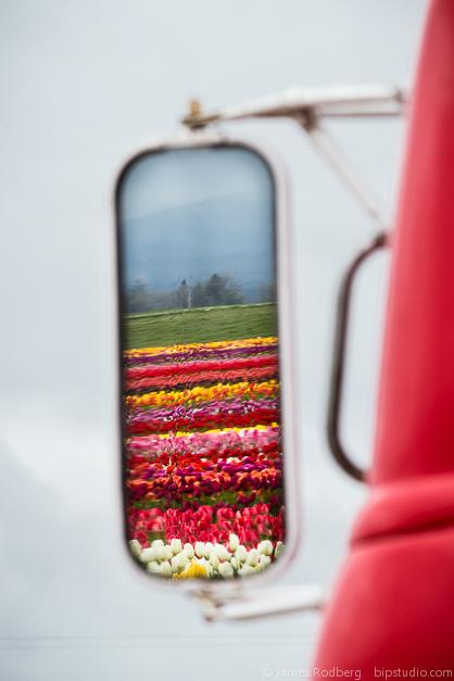 Tulip-Festival_0418.jpg