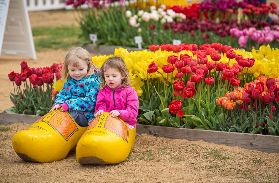 Tulip-Festival_0433.jpg