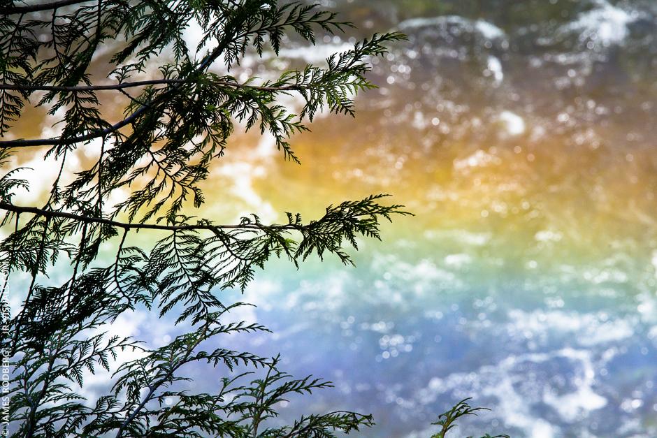 rainbow-river_0715