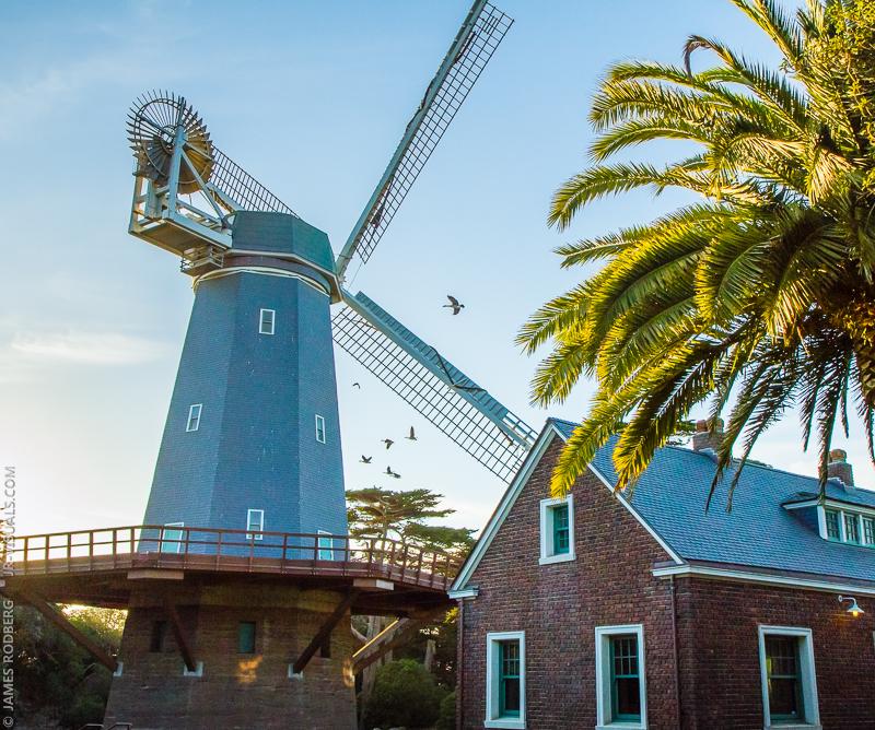 windmill-palm-tree-brick-building_2542