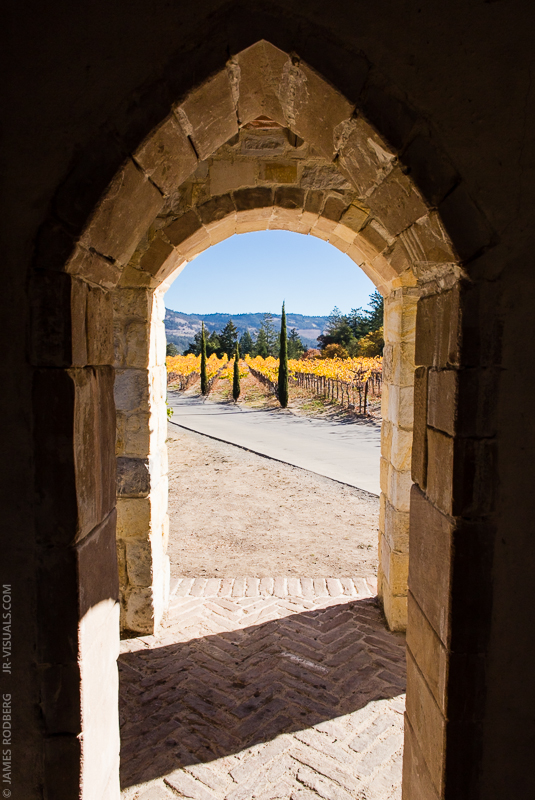 medieval-castle-vineyard_9902