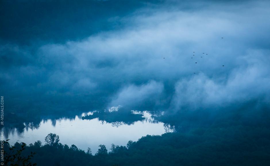 morning-pond-fog-birds_7551