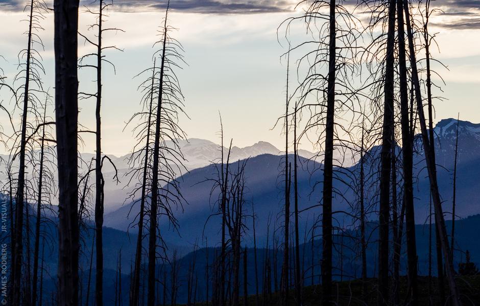 yellowstone-morning-mountain-range_5938