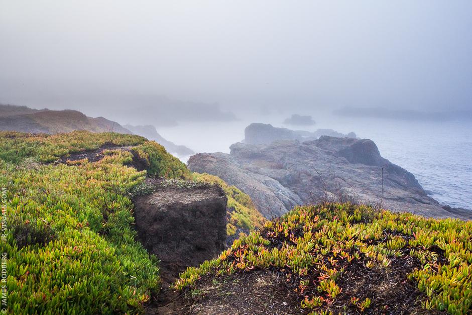 northern-california-coast-ocean-rocks-fog_7690