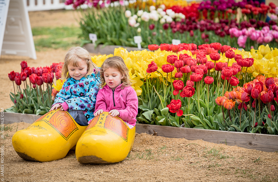 kids-tulips-wooden-shoes_0433