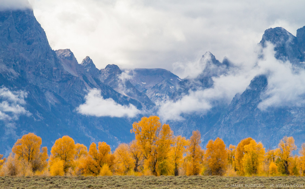 Tetons Mountains Fall Color #8361
